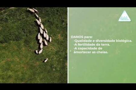 Embedded thumbnail for EROSÃO